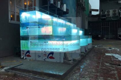 Bể Hải Sản Kinh Cong Thi Công Tại Thành Phố Bắc Ninh