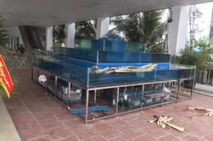 Bể Hải Sản Nhà Hàng 4 Mặt Thi Công Tại Bãi Biển Hải Tiến – Thanh Hóa