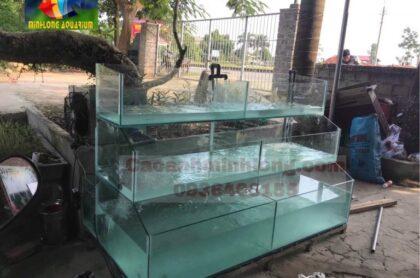 Mẫu Bể Hải Sản Thi Công Tại Thành Phố Vĩnh Phúc