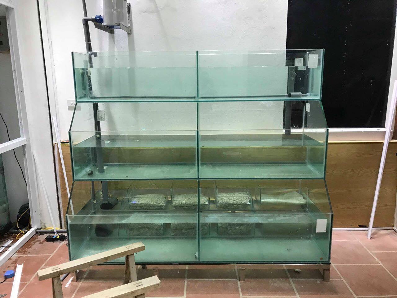 Mẫu Bể Hải Sản 3 Tầng Kính Trồng Kính – Gía Rẻ
