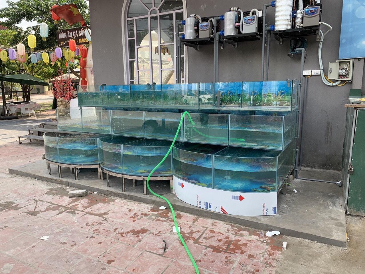 Lắp đặt máy lạnh bể hải sản