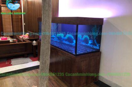 Mẫu Bể Cá Rồng Thi Công Tại Thái Nguyên