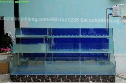 Mẫu Bể Hải Sản 3 Tầng Kính Trồng Kính Thi Công Tại Thành Phố Hà Tĩnh