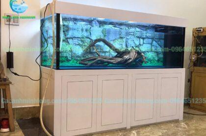 Mẫu Bể Cá Rồng Thi Công Tại Đông Anh – Hà Nội