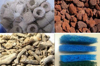 Lợi ích của vật liệu lọc với bể hải sản